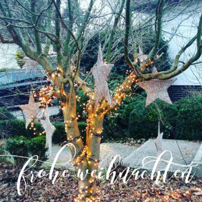Blogbeitrag-Frohe-Weihnachten 2016